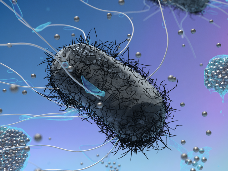 Silver offers hope of solving the antibiotics crisis - bacterial resistance to nanoparticles can ...  Silver offers h...